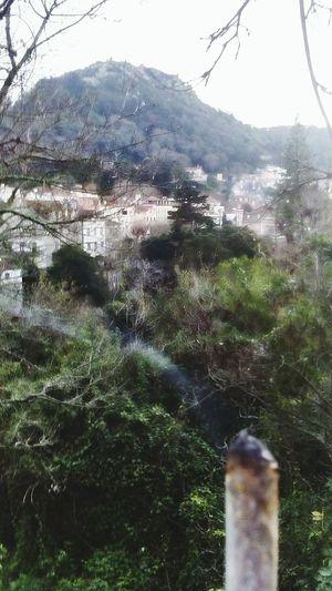 Sintra, Portugal Village Nature Castle Castelosdeportugal Spliff 420 Flow Pidgeon Garden