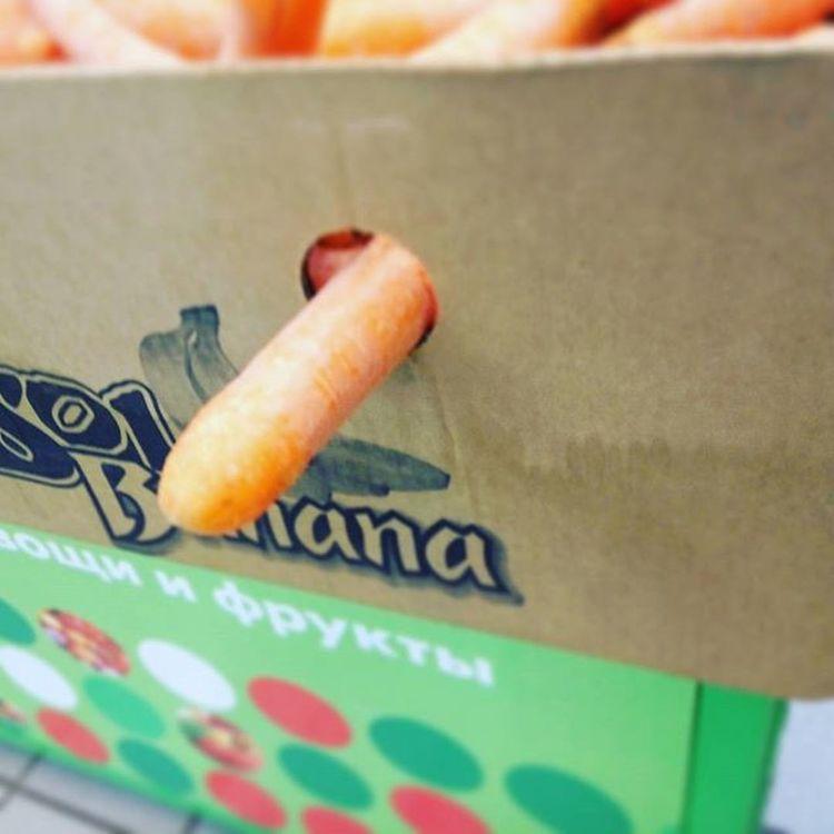 Почувствуй нашу морковь