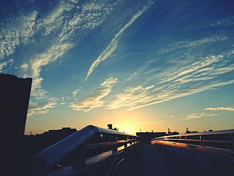 Japan Sky Clouds And Sky Nagoya-shi Popular Photos Nagoya Sunset Clouds The Sky At Sunset The Sky The Setting Sun Magic Hour Colour Of Life Blue Color Setting Sun The Sun 上社 Orange Color A Blue Sky