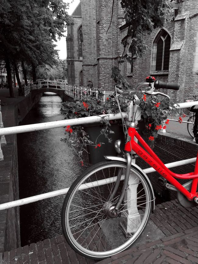 Red Color Splash Delft Nederland From My Point Of View Bike