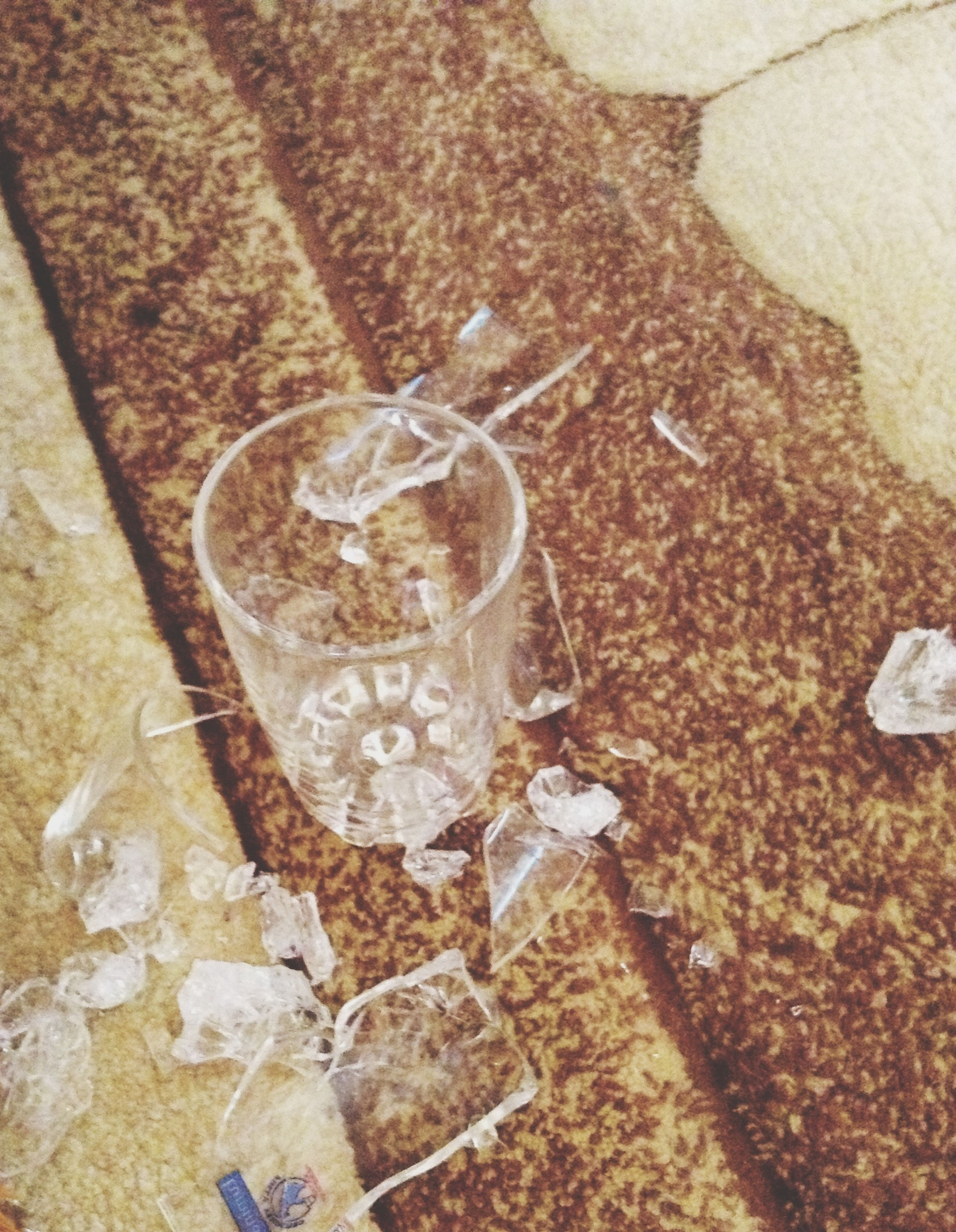 Broken Glass WTF Kids Done That Hate That