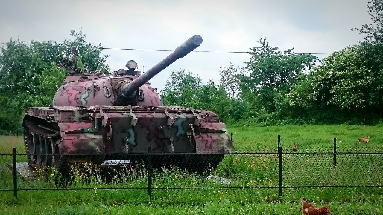 Tank Tank Tanks War Nature Photography Sky And Clouds Trees Chickens Weapon Of War Weapons Of War Weapon Weapons Weaponsofwar