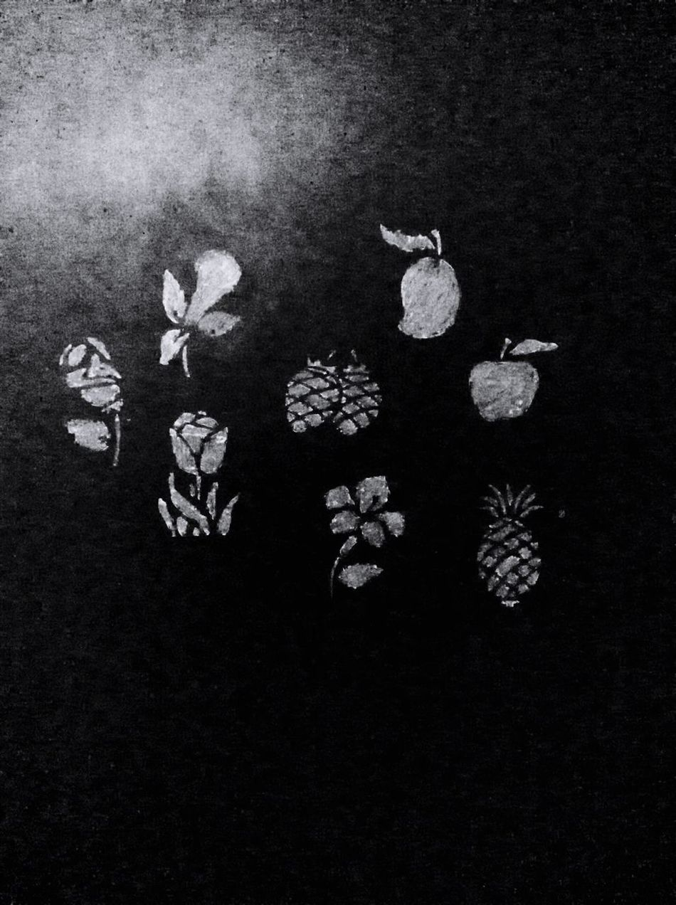 Wall of Creativity IPadography Mango Pineapple Apple Strawberry and other flowers