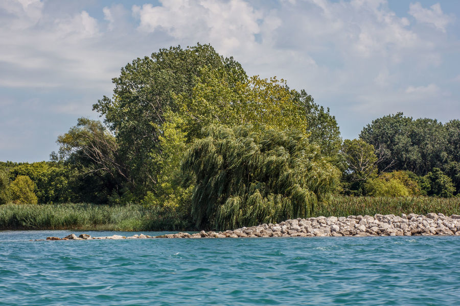 Stoney Island dike Detroit River Rock Formation Stoney Island Beauty In Nature Cloud - Sky Day Dike Green Color Growth Marshland  Michigan Outdoors Nature No People Outdoors Scenics Sky Tranquility Tree Water