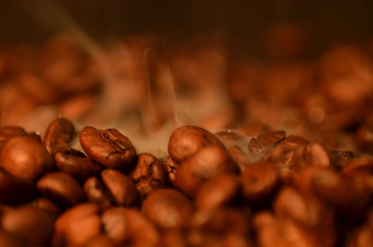 food and drink, selective focus, food, close-up, brown, coffee bean, raw coffee bean, abundance, nut - food, freshness, no people, indoors, nature, day