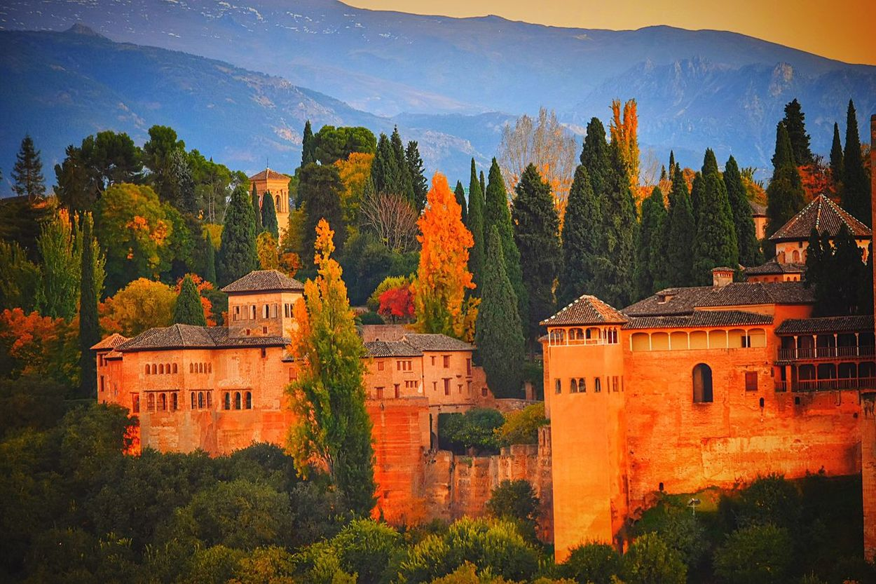 Generalife's Gardens Exploring New Ground Hello World Sunrise N Sunsets Worldwide  Autumn Colors EyeEm Best Shots Respect For The Good Taste Let's Do It Chic! There Be Dragons Golden Hour In Action Capture The Moment Nikonphotography Nikon D7200 Nature Textures EyeEm Nature Lover 07:00 ^ Top Popular Photo The Eyeem Collection At Getty Images