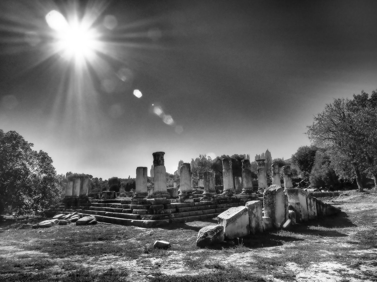sunlight, sun, lens flare, sunbeam, tree, no people, built structure, architecture, outdoors, sky, old ruin, nature, day, building exterior