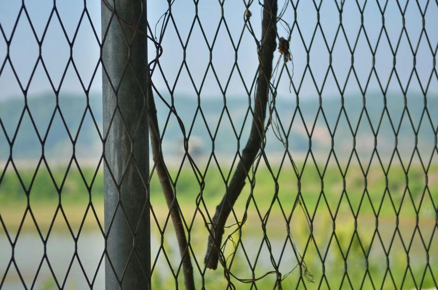 Nikon Nikonphotography Nikon D7000 Northkorea Imjingak Fence OpenEdit Korea