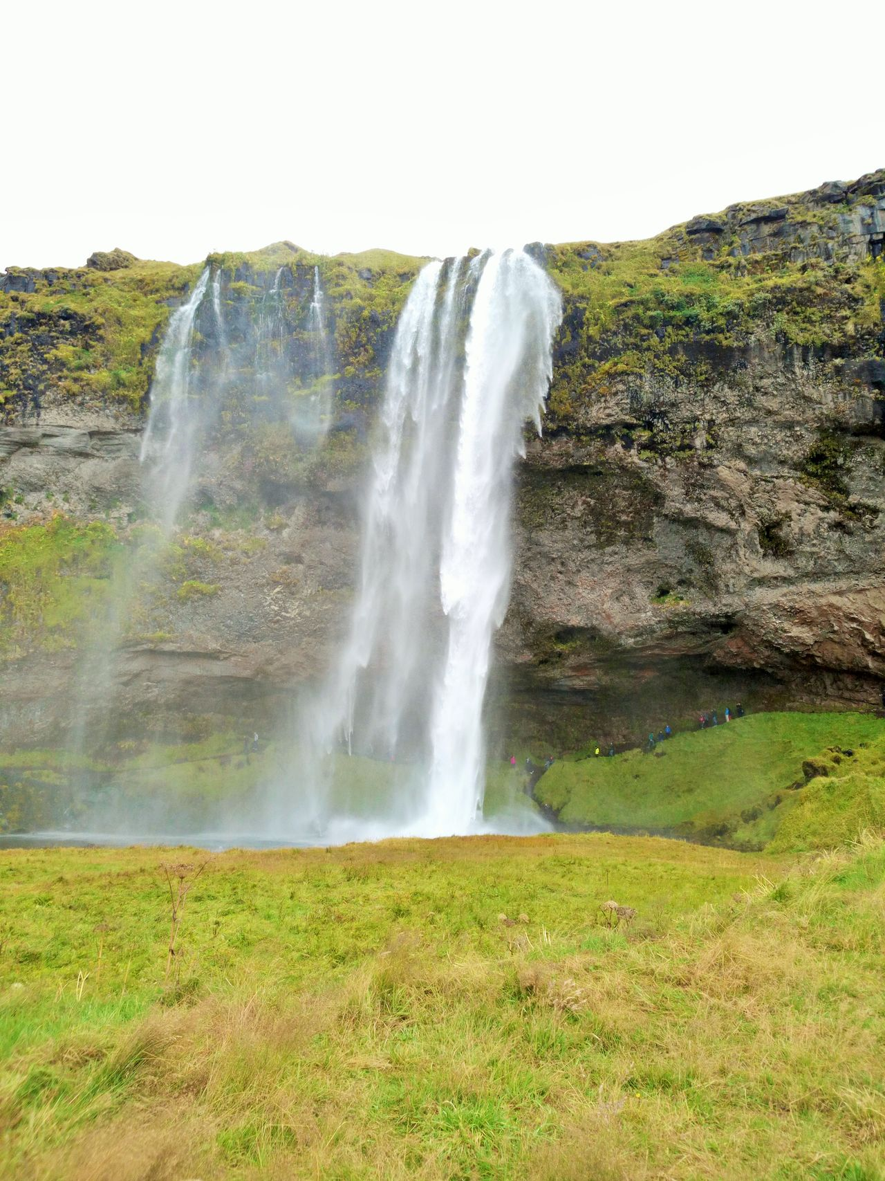 Beauty In Nature Grass Island Landscape Nature Outdoors Water Waterfall Island Life Islande Green Color Stone Islandlife ROC Beautiful Tranquility Sky Islande Icelandtrip Iceland_collection The Great Outdoors - 2017 EyeEm Awards Live For The Story BYOPaper!