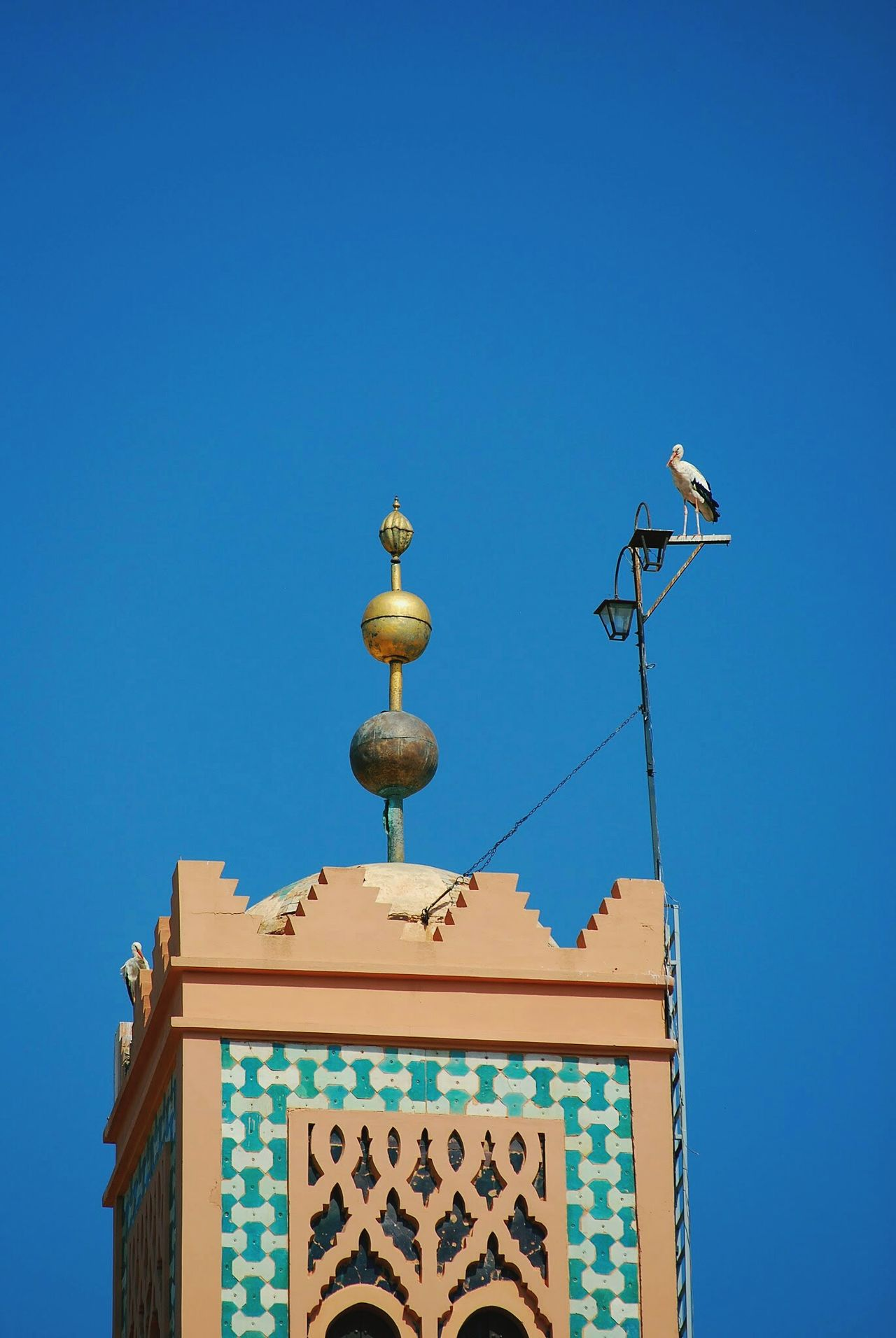 Sky City Tower Bird Summer Minimalism Holidays Marrakech
