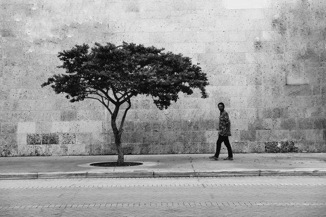 Miami Miami Florida Light And Shadow Monochrome Streetphoto_bw Urban Geometry EyeEm Best Edits EyeEm Best Shots - Black + White Streetphotography Eye4 The Streets Blancoynegro Blackandwhite Urban Landscape