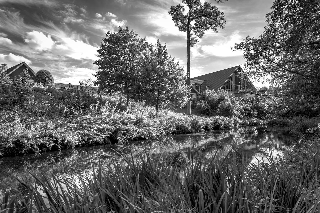Tree Water Growth Sky Pond Beauty In Nature Lake Cloud - Sky Reflection Non-urban Scene Black And White Black & White Blackandwhite Beauty In Nature EyeEm Nature Lover Freshness TakeoverContrast at Margretetorp Ängelholm Sweden