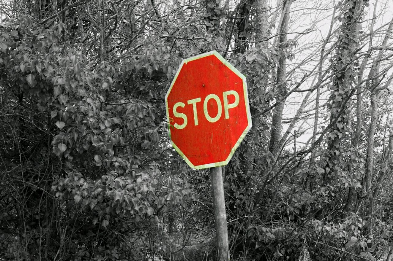 Stop Sign Colour Splash Red Blackandwhite Sign Sign Post British Stop Sign British Sign Post Hedge Road Sign British Road Sign British Country Road Country Road Uk Signposts United Kingdom Stop Sign Experimental Street Photography Streetphotography Black N White N Read Showing Imperfection Up Close Street Photography Resist
