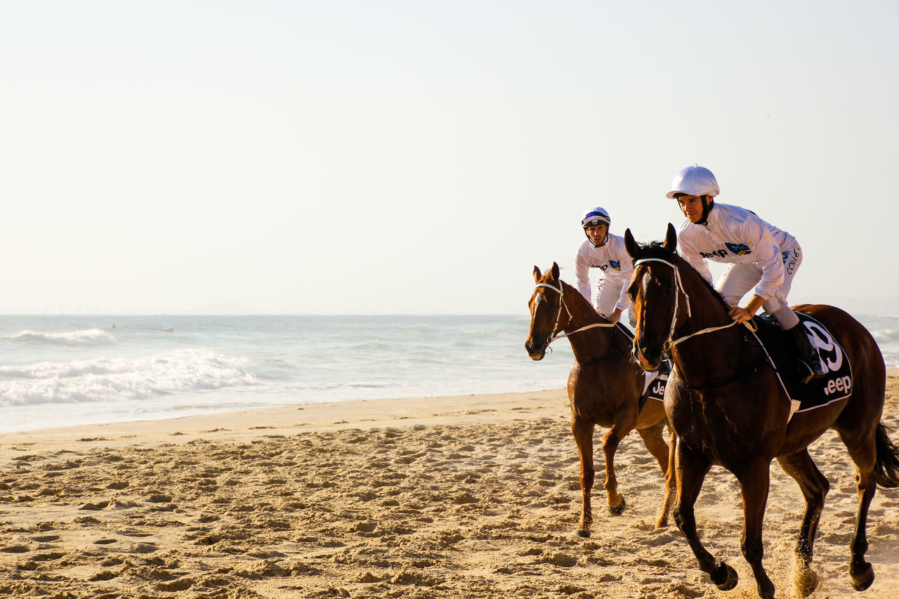sand, sea, beach, horse, real people, men, domestic animals, nature, horseback riding, outdoors, clear sky, horizon over water, leisure activity, riding, togetherness, lifestyles, day, mammal, women, vacations, full length, sky, beauty in nature, adult, people