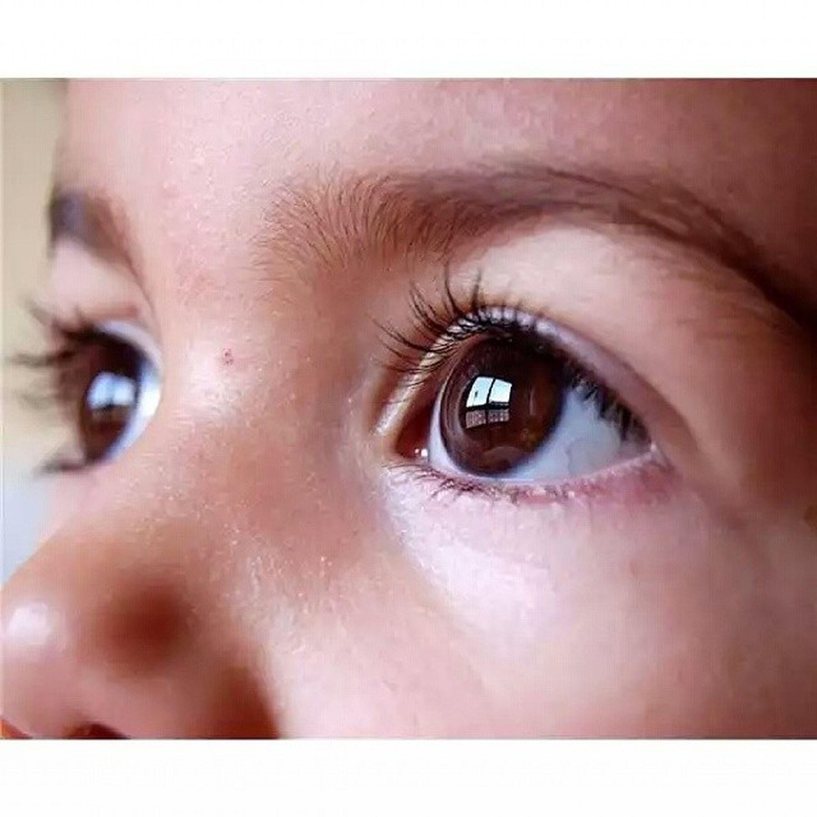 human eye, close-up, eyelash, human face, looking at camera, part of, human skin, sensory perception, portrait, eyesight, lifestyles, headshot, auto post production filter, extreme close-up, extreme close up, eyebrow, transfer print