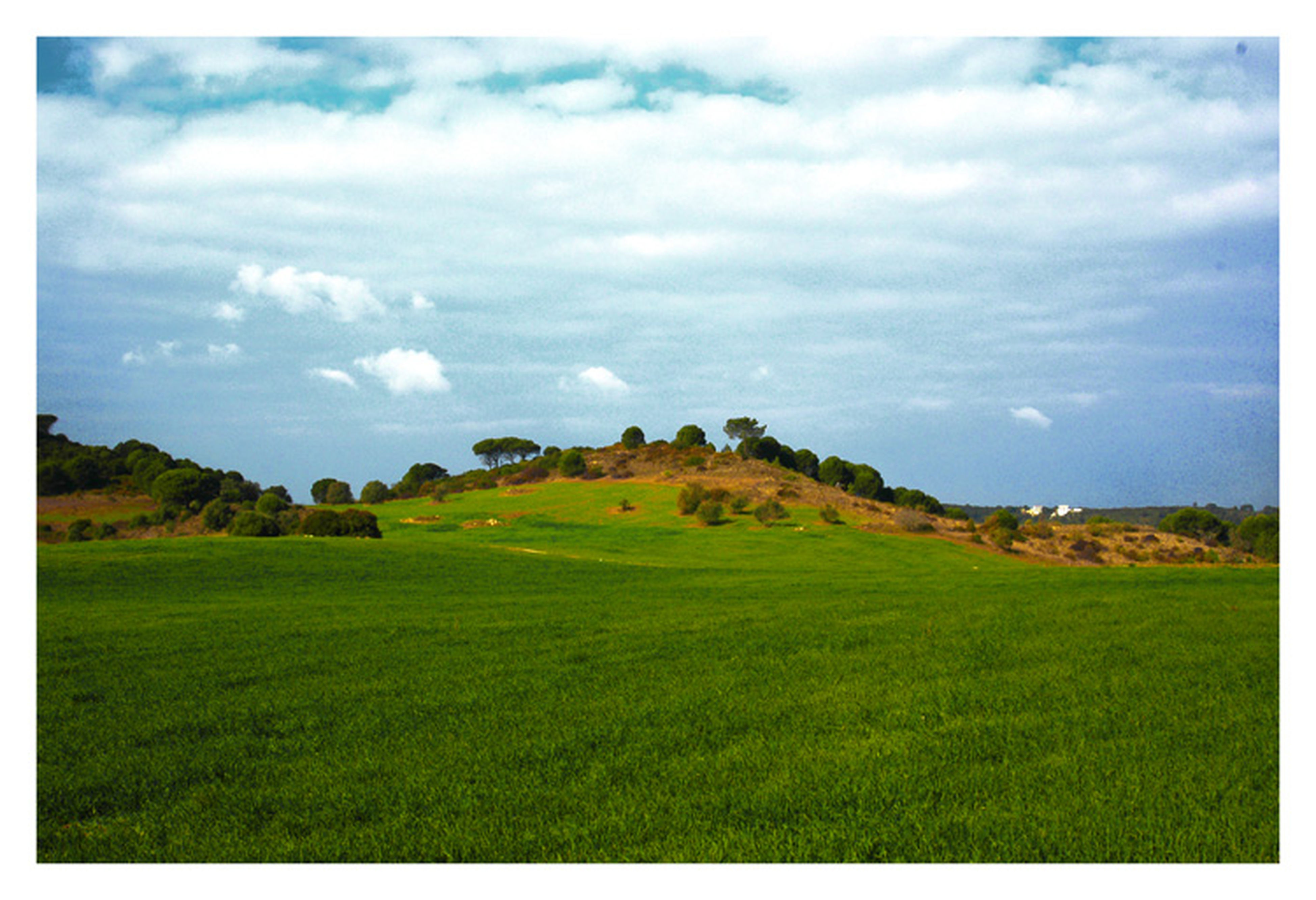 transfer print, grass, landscape, sky, tranquil scene, field, tranquility, green color, scenics, beauty in nature, auto post production filter, cloud - sky, nature, grassy, cloud, growth, cloudy, horizon over land, rural scene, idyllic