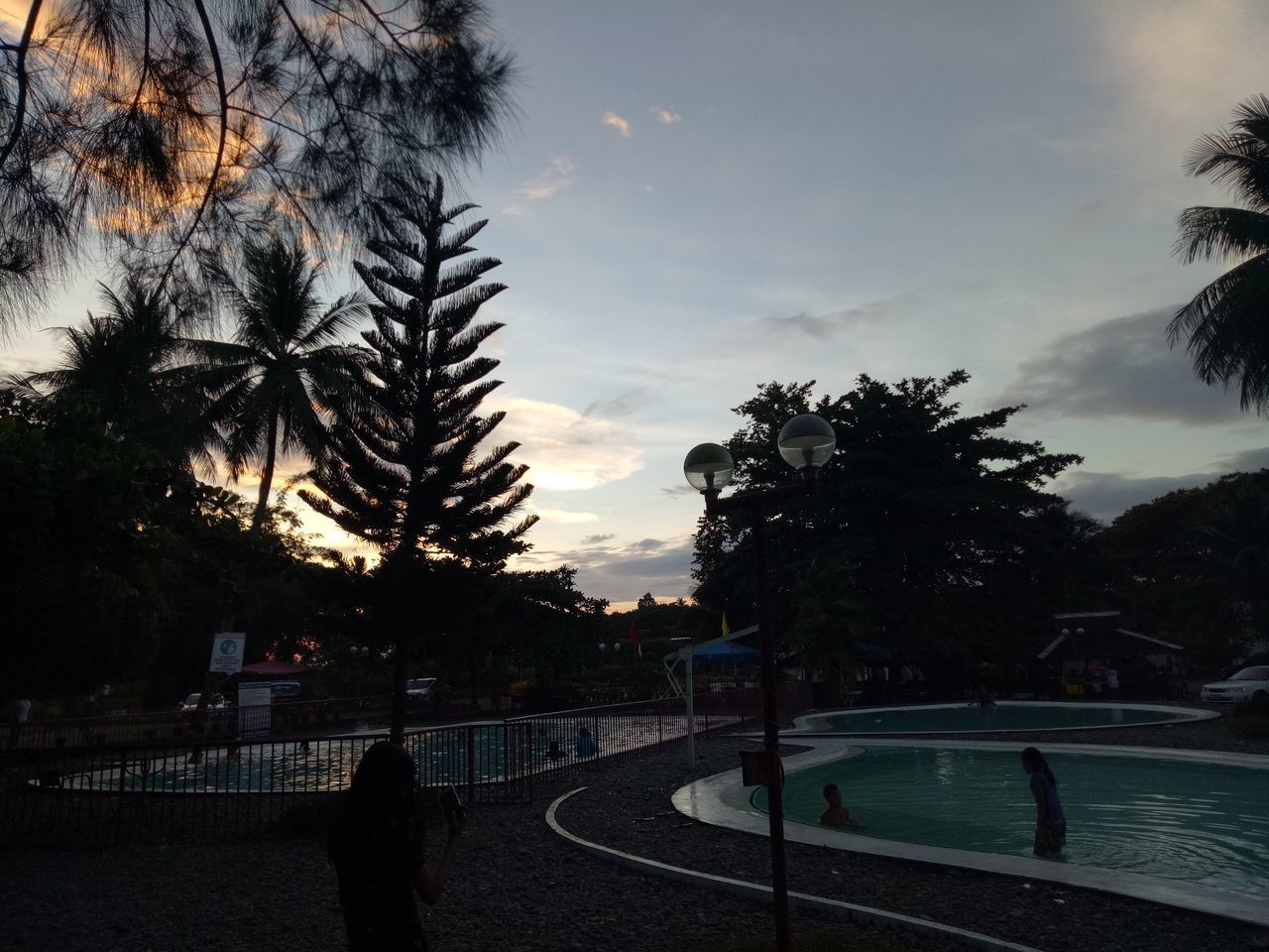 tree, real people, sky, palm tree, sunset, cloud - sky, silhouette, swimming pool, leisure activity, lifestyles, one person, sport, water, outdoors, men, skateboard park, nature, day, people