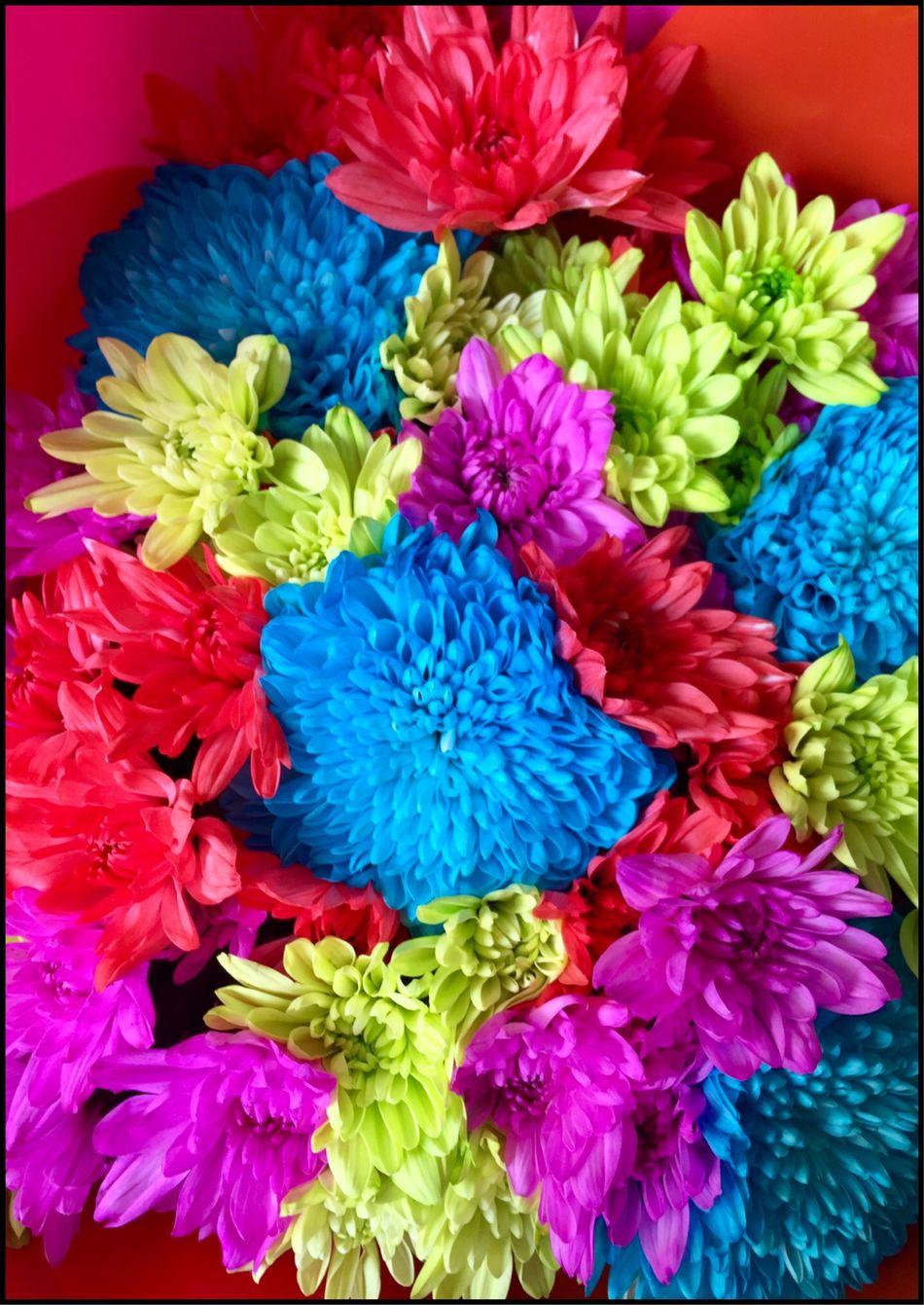 Beautiful bunch of Flower's 💐💐💐 Bouquet Bouquet Of Flowers Flowers Flower Collection Flowers Of EyeEm Rainbowflowers Flowerphotography Flowersoftheday Flowermagic Scent Of A Flower Beautiful Flowers 💐💐💐