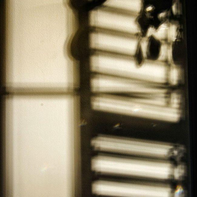 Spring shadows.Spring Shadow Rrhurstphotography Photographer Photography Digitalphotography Sunset Iamnikon Nikoncanada Nikonphotography Nikon Nikonofficialitalia Nikonoftheday Nikond7000 Random Light Nofilter Lovetotakepictures Lovetocreatepictures Latowphotographersguild