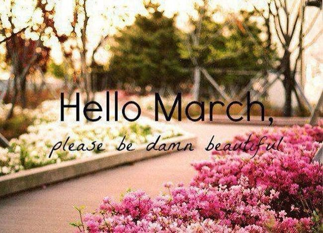 H E L L O MARCH New Month Springtime please be sweet