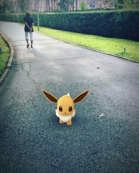 Evee  Pokémon Pokemon Go Real People Outdoors One Person Day กุยังเล่นอยู่ โถ