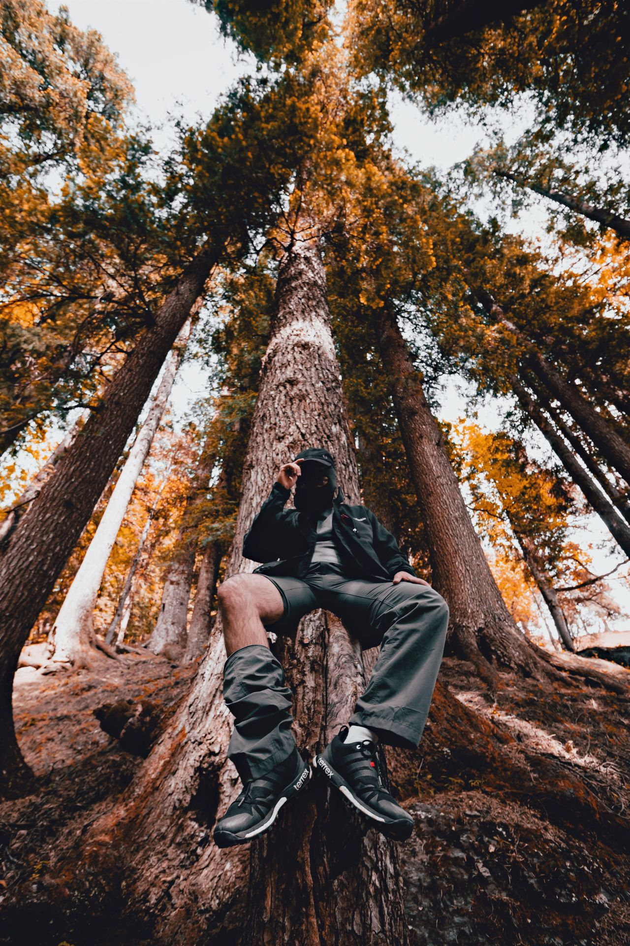 Hello there! Tree People And Places Casual Clothing Outdoors Non-urban Scene Nature Carefree Exploration Tranquility WoodLand Beauty In Nature Scenics Tranquility EyeEm EyeEm Best Shots EyeEmBestPics Eyeem Market Adventure Tree Trunk Forest Into The Wild Low Angle View Into The Woods Himalayas Person