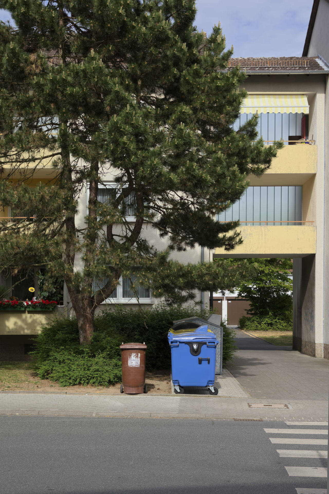 Waiting together Blue Brown Building Exterior Couple Crosswalk Day Dustbin Fence Garbage House No People Outdoors Sidewalk Street Together Trash Barrel Tree Urban Waiting