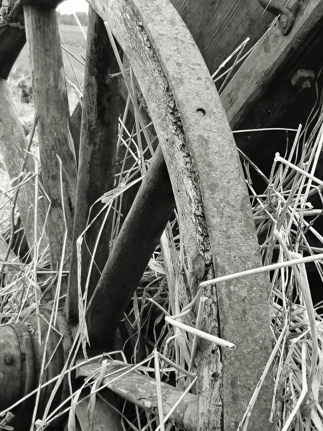 Weel Barrol Agent Antique Countryside Country Life Black & White Blackandwhite Black And White EyeEm Best Shots - Black + White EyeEm Gallery Black And White Photography Still Life Weel