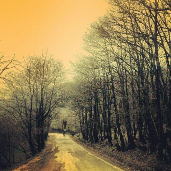 Instasky . Instagood . Instaturkey . Instagramt ürkiye. view. photooftheday. trees. road. sky