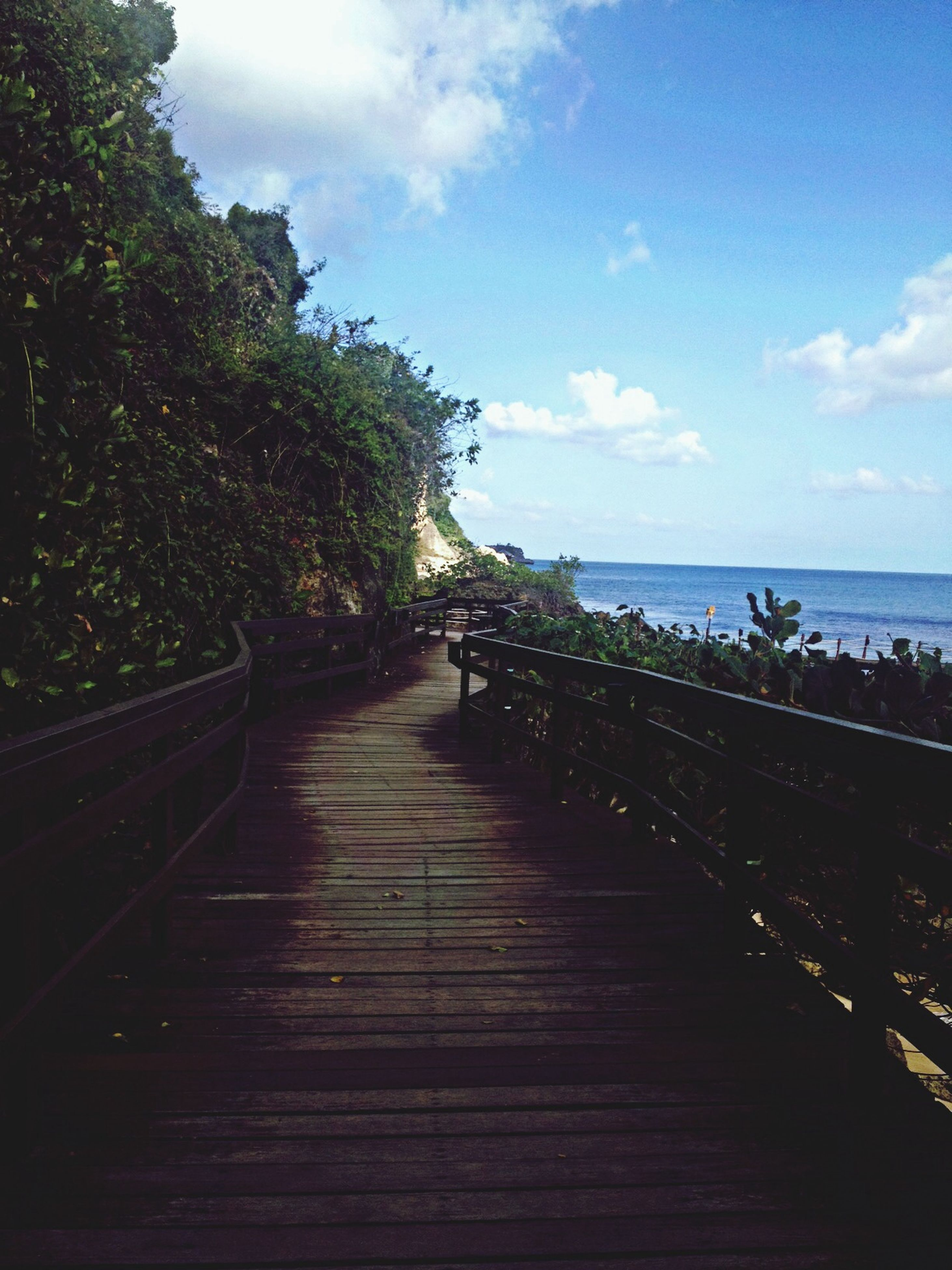 sea, sky, water, the way forward, tranquil scene, tranquility, horizon over water, railing, scenics, boardwalk, beauty in nature, tree, wood - material, nature, pier, cloud - sky, cloud, beach, idyllic, blue