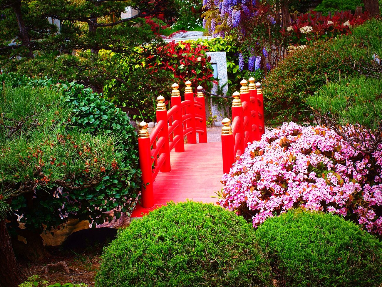 Le jardin japonais de Monaco 🇯🇵