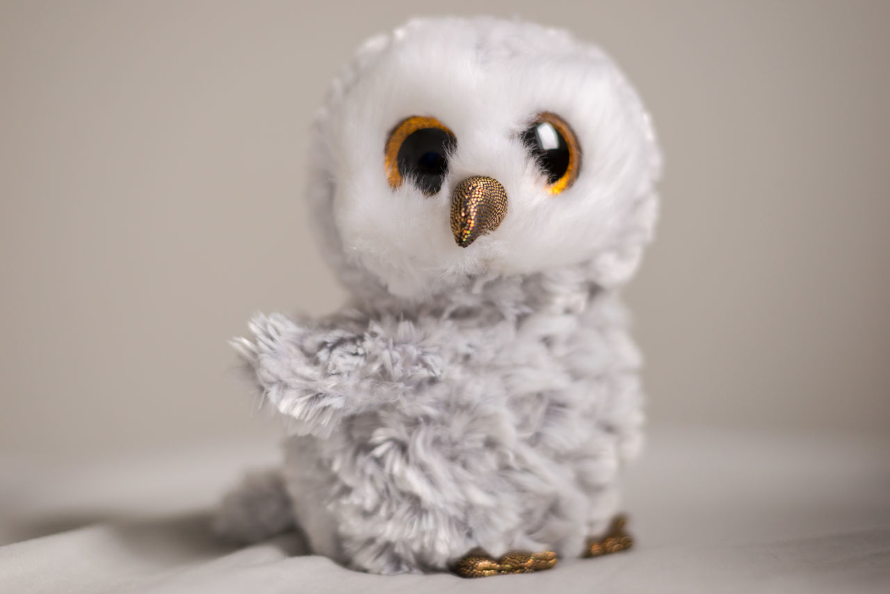 White-gray Soft Baby Owl Toy Soft Toy Animal Themes Baby Owl Cute Little Owl Owlie Toy Toy Photography Toycommunity Toyphotography