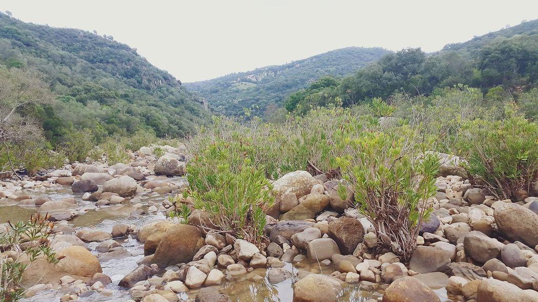 Hiking River Life River Walk Riverside River Earth Love Hiking Jimena De La Frontera Trees Hiking View Forrest Hikinglife Mountain Alcornocales Looking For Adventures Hiking Adventures SPAIN Nature Water River View Riverbank Hiking Trail Hiking❤ The KIOMI Collection