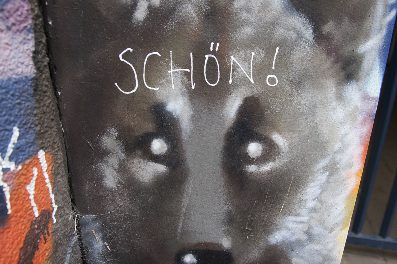 Berlin Close-up Day Europe Germany Graffiti Message Mural Outdoors Schön Street Art Text Wolf