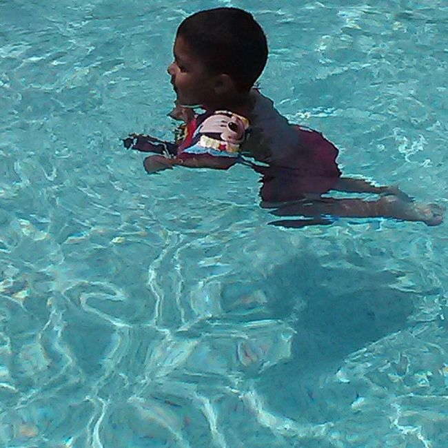 Bear Swimmingbaby Babyswimming