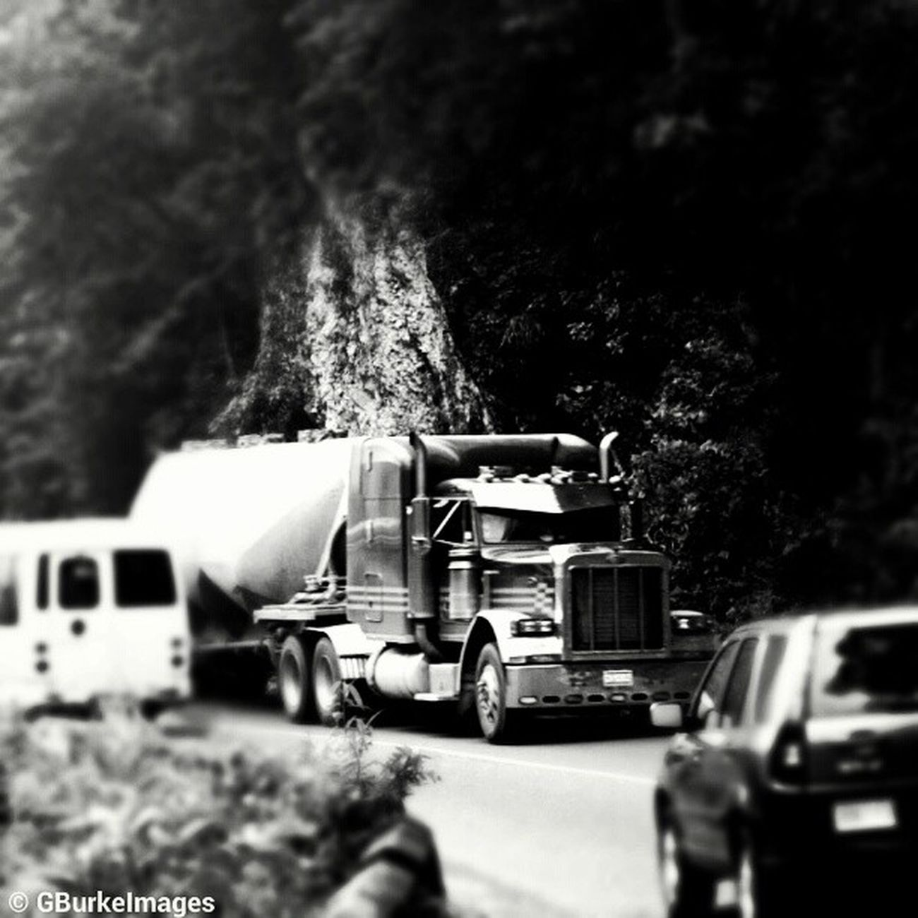 Ode to Stephen King: Demon Truck in the Rio Cobre Gorge, Jamaica. Driving this narrow, winding, single lane road is not for the faint of heart! Stephenking RioCobre Jamaica Jamaicalife InstagramJamaica streetwalker_069 streetphotography streetphotography_bw ampt_community squaready streetwalker_069 monstertruck demontruck