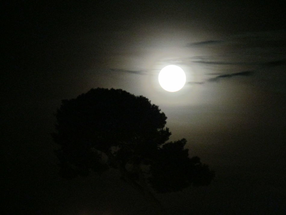 Night Moon Nature Tranquil Scene No People Rome Rome By Night
