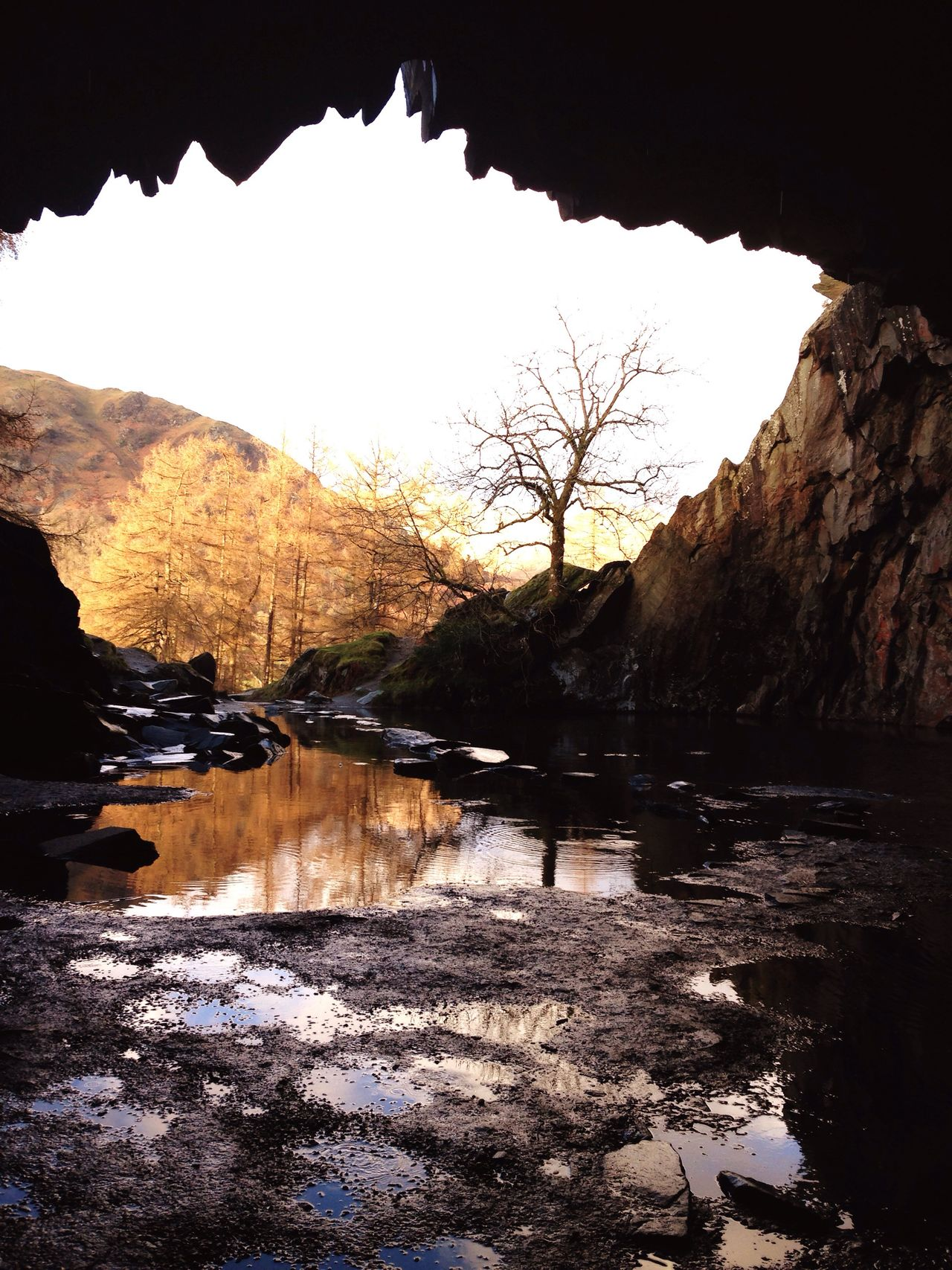 Nature Beauty In Nature Outdoors Water Tree Cave Lake District No People Scenics Non-urban Scene Tranquility Bare Tree Tranquil Scene Day Romantic Walk Hiking Adventure Relaxing Life Is Beautiful Beautiful Nature Miles Away Forest Puddles Spring