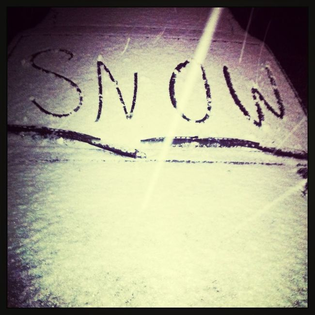 The Snow This Morning