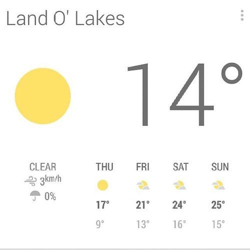 Mi clima perfecto