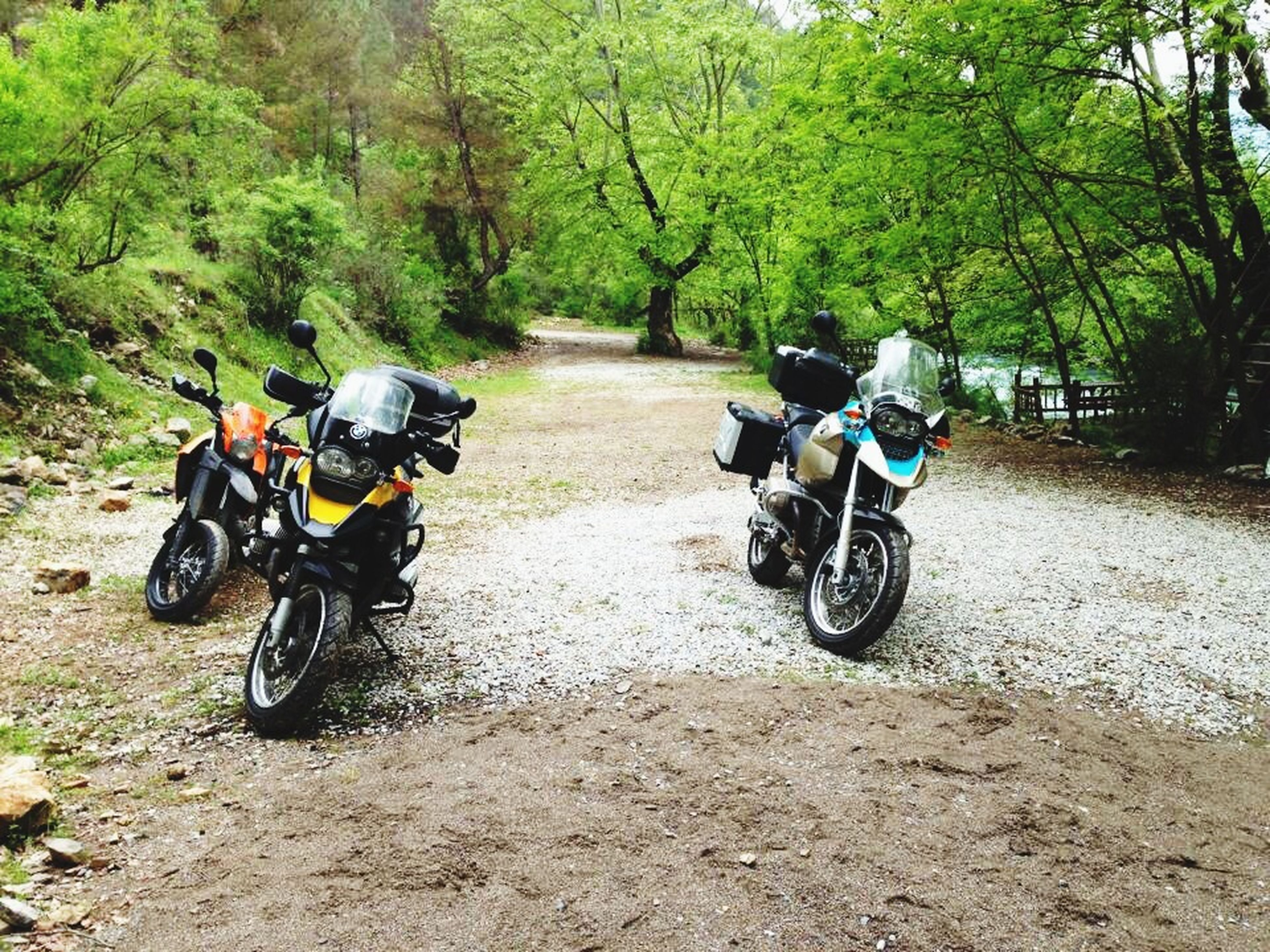 bicycle, transportation, land vehicle, mode of transport, riding, tree, motorcycle, men, cycling, lifestyles, leisure activity, travel, on the move, stationary, parked, dirt road, full length, road