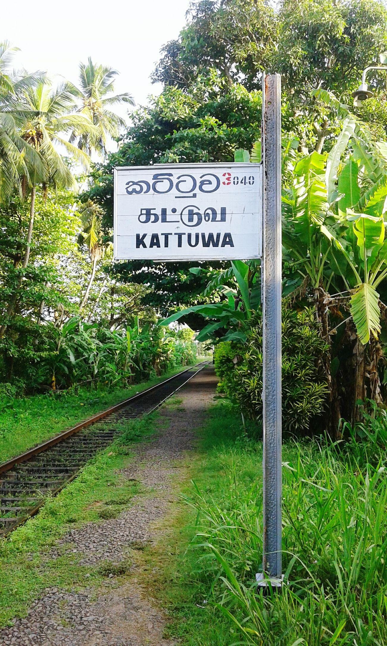 railway sri lanka...