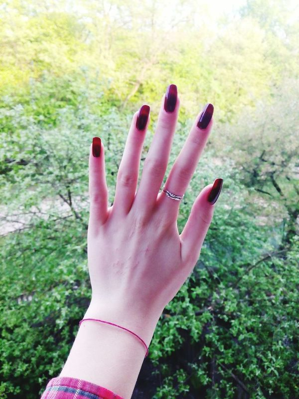 Hand Green Beautiful Hand Beautiful