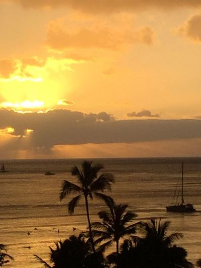 Palm Trees 🌴 Pacific Ocean Sky Pacific Sky Pacific Pacific Ocean View Island Of Oahu, Hawaii Oahu / Hawaii Oahu, Hawaii Oahu Island Tropical Island Tropical Paradise Tropics Pacific No People Ocean No Edit/no Filter Boat Pacific Sunset An Eye For Travel