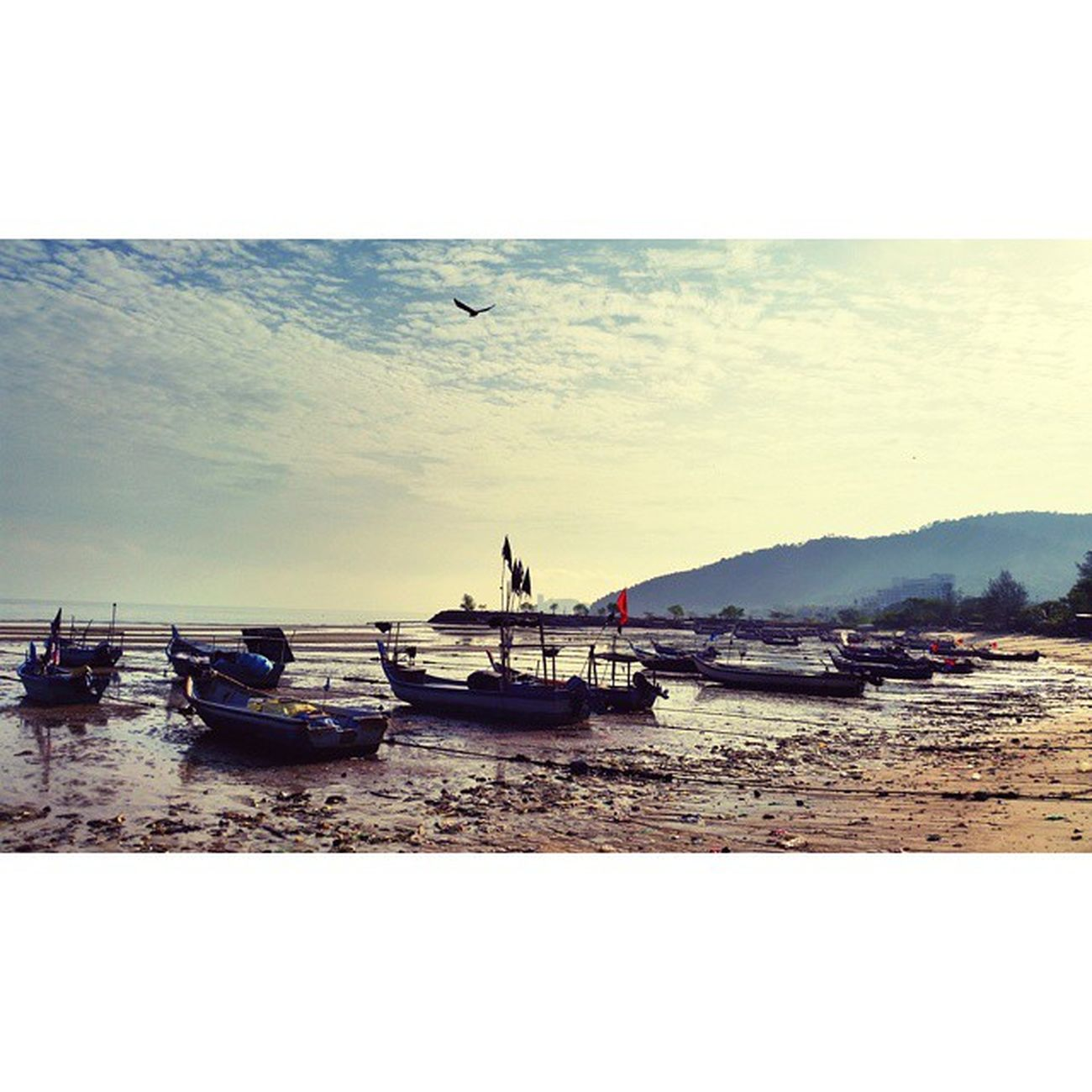 A fishing village near the Penang National Park on the west coast of the cape at the northwest of Penang Island. Penanglang Penang Beach Malaysia Travelling Travelgram Natureporn FishingVillage Sunrise Nationalgeographic Malaysiaboleh Penangisland Cb_travellogs