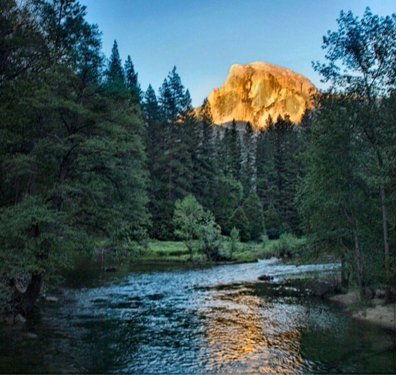 Yosemite Gold. Wilderness EyeNatureLover Sunset #skyporn #cloudporn # Bestskyever #gorgeous # Beautiful #stunning Eye4nature