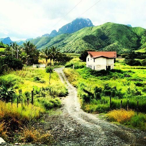 Caminitos de San Juan de los morros Venezuela Venezuela_es Venezolano  Insta_ve Instavenezuela Streetphotovenezuela Losmorros Mountain Scenic Beautiful Farm Forest