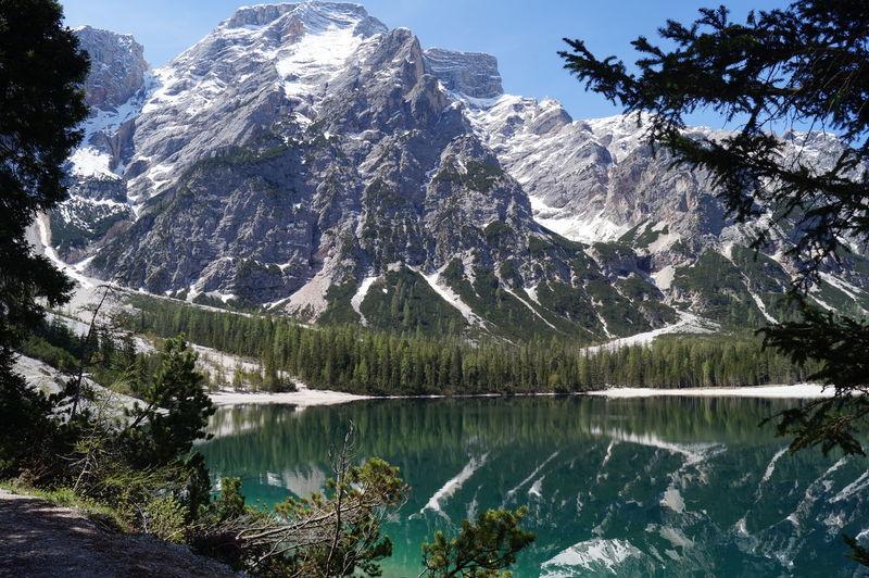 Reflection Mountain Water Tree Nature Lake Snow Beauty In Nature Mountain Peak Landscape Scenics Pragserwildsee Wildlake Italy