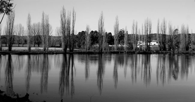 I couldn't decide which one to put up. So here is the other one😊 The Great Outdoors - 2016 EyeEm Awards The Great Outdoors With Adobe Bega Australian Landscape Ladyphotographerofthemonth Australia Nature On Your Doorstep Showcase May Autumn Beautiful Day Poplar Trees Bare Trees Reflections Water Reflection Instatrees