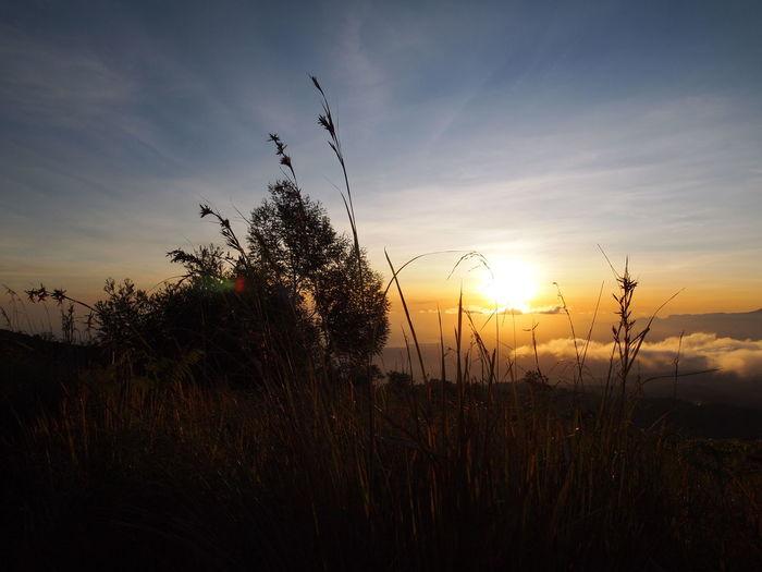 The Calmness Within PuncakB29 Lumajang